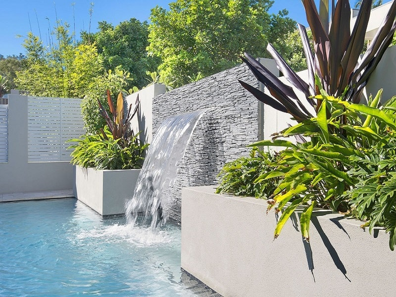 Tropical plants used in pool installation