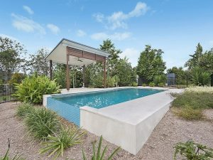 Landscaping next to lap pool by Cityscapes